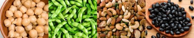 vegan protein banner