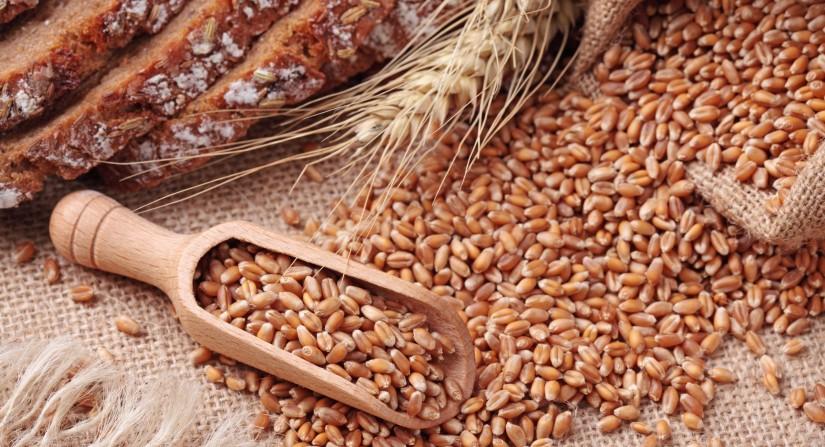 whole-grains-stock