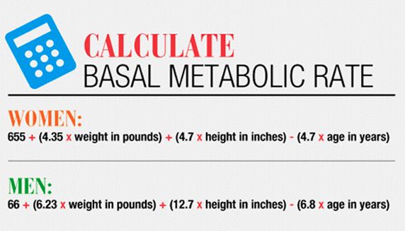 bmr calculate